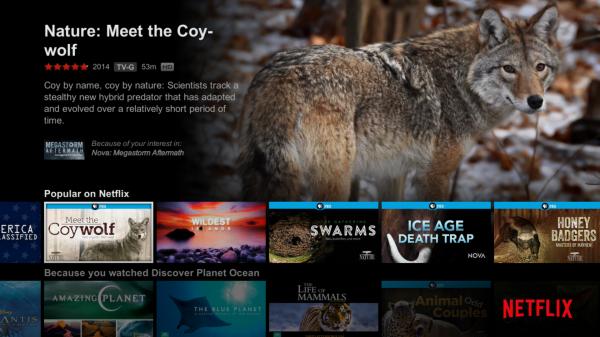 Netflix fungerar utmärkt på Fire TV Stick.